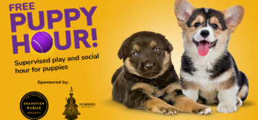Free Puppy Hour at Central Bark West Palm Beach